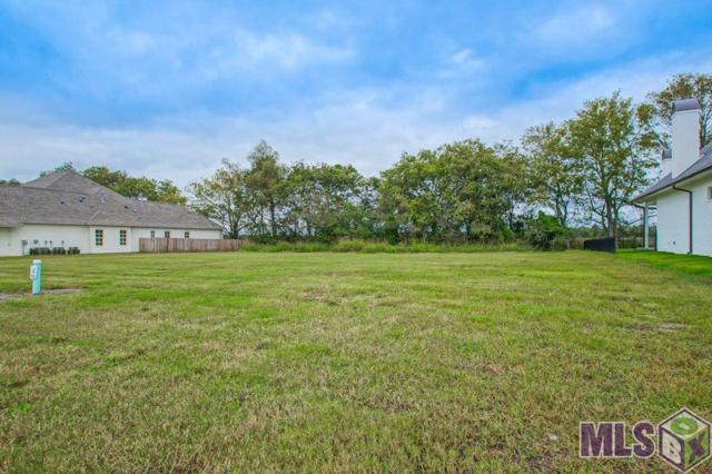 2060 Tiger Crossing Dr, Baton Rouge, LA 70810 (#2018018382) :: Patton Brantley Realty Group