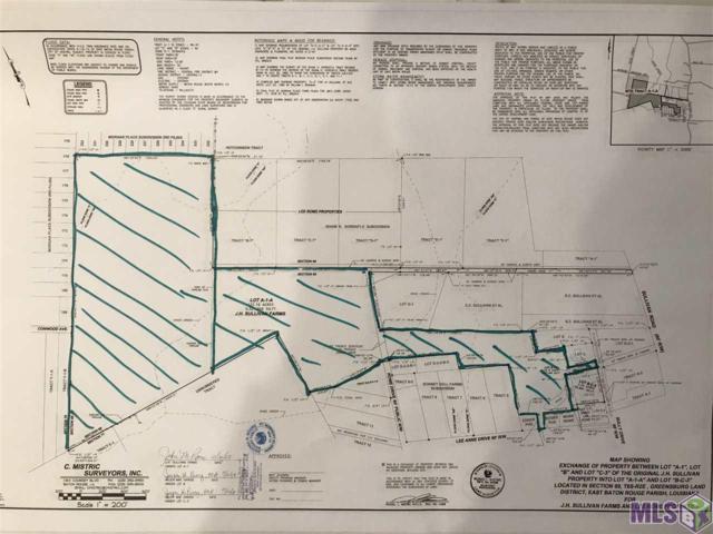 Tbd Sullivan Rd, Central, LA 70818 (#2019000248) :: David Landry Real Estate