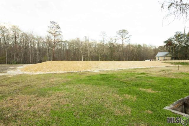 13215 Diversion Canal Rd, St Amant, LA 70774 (#2019001675) :: Patton Brantley Realty Group