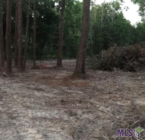 LOT 3-C Maxwell Dr, Walker, LA 70785 (#2019001730) :: Patton Brantley Realty Group