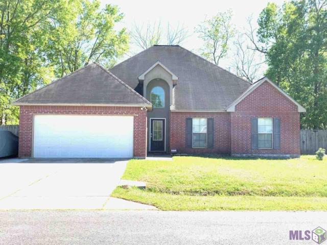 425 E Great Haven St, Gonzales, LA 70737 (#2019002057) :: The W Group with Berkshire Hathaway HomeServices United Properties