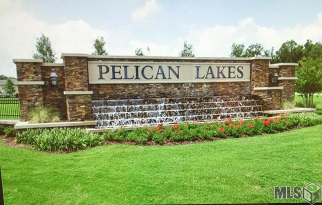 1235 Meridian Dr, Baton Rouge, LA 70820 (#2019002120) :: Patton Brantley Realty Group