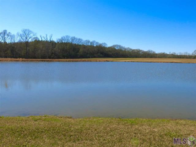E3-B Hwy 955 E, Ethel, LA 70730 (#2019003687) :: Patton Brantley Realty Group