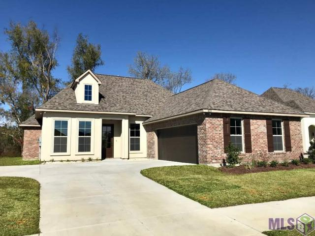 620 Lakehaven Dr, Gonzales, LA 70737 (#2019003819) :: The W Group with Berkshire Hathaway HomeServices United Properties