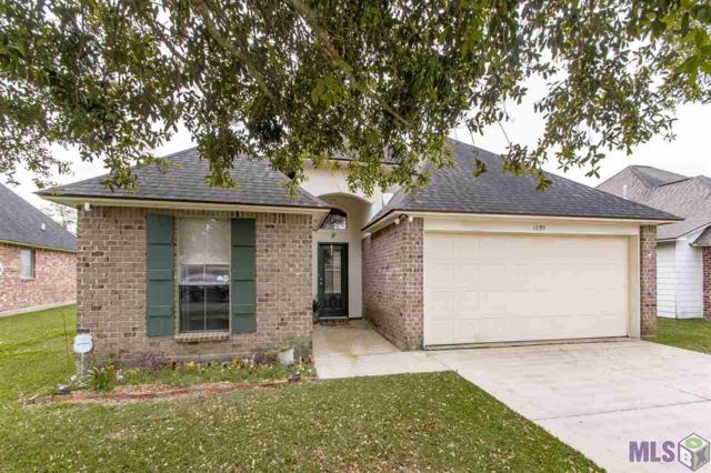 12195 Riverwalk Dr, Geismar, LA 70734 (#2019004134) :: Patton Brantley Realty Group
