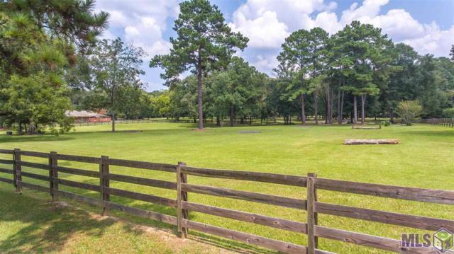 6726 Oak Cluster Dr, Greenwell Springs, LA 70739 (#2019004594) :: The W Group with Berkshire Hathaway HomeServices United Properties