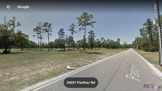 24031-24059 Panther Rd, Springfield, LA 70462 (#2019005406) :: The W Group with Berkshire Hathaway HomeServices United Properties
