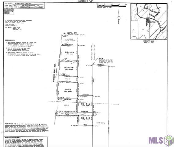 TBD Morris May Rd, Denham Springs, LA 70726 (#2019005516) :: David Landry Real Estate
