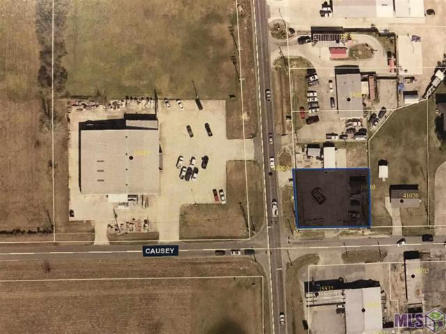 16010 La Hwy 44, Prairieville, LA 70769 (#2019006633) :: The W Group with Berkshire Hathaway HomeServices United Properties