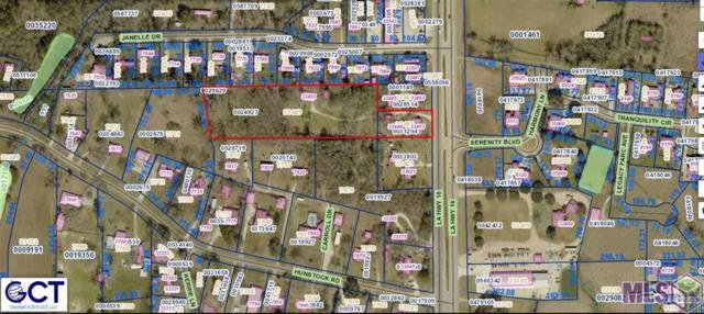 33465 La Hwy 16, Denham Springs, LA 70706 (#2019006685) :: Smart Move Real Estate