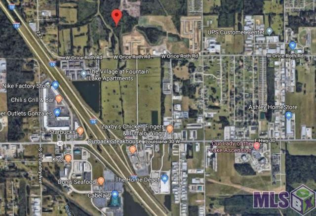 2304 Orice Roth Rd, Gonzales, LA 70737 (#2019006910) :: David Landry Real Estate