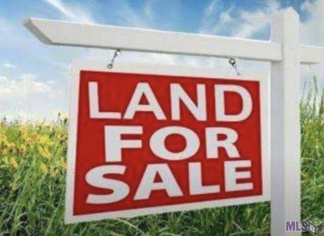 45172 Manny Guitreau Rd, Prairieville, LA 70769 (#2019007034) :: Patton Brantley Realty Group
