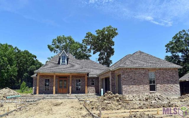 37450 Cypress Hollow Ave, Prairieville, LA 70769 (#2019007844) :: The W Group with Berkshire Hathaway HomeServices United Properties
