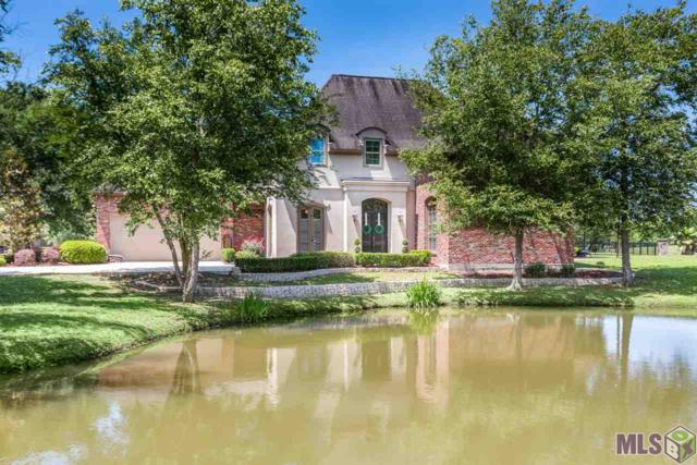 40067 Pelican Point Pkwy, Gonzales, LA 70737 (#2019007993) :: The W Group with Berkshire Hathaway HomeServices United Properties