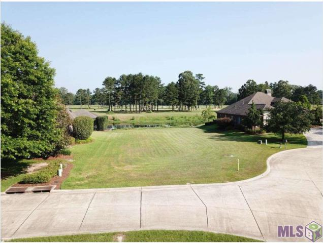 24206 Snowy Egret Cove, Springfield, LA 70462 (#2019009641) :: The W Group with Berkshire Hathaway HomeServices United Properties