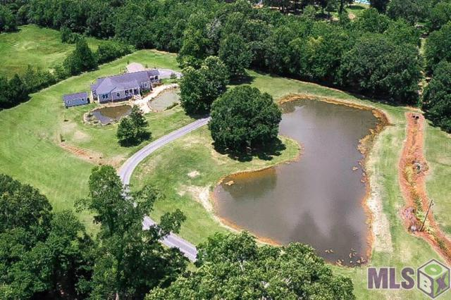 12425 Sandbom Place, Gonzales, LA 70737 (#2019010295) :: The W Group with Berkshire Hathaway HomeServices United Properties