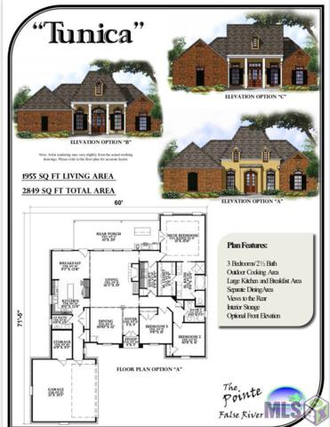 7672 Cutt Pointe Dr, Ventress, LA 70783 (#2019010390) :: Patton Brantley Realty Group