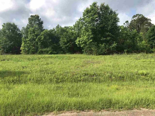 Misty Oaks Ave, Baker, LA 70714 (#2019010884) :: The W Group with Berkshire Hathaway HomeServices United Properties