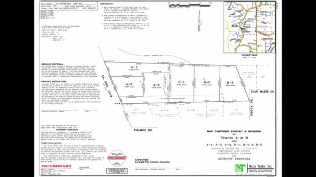 34110 La Hwy 1019, Denham Springs, LA 70706 (#2019011908) :: Patton Brantley Realty Group