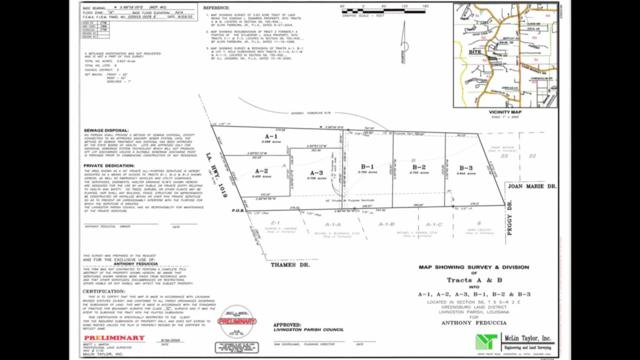 34116 La Hwy 1019, Denham Springs, LA 70706 (#2019011910) :: Patton Brantley Realty Group