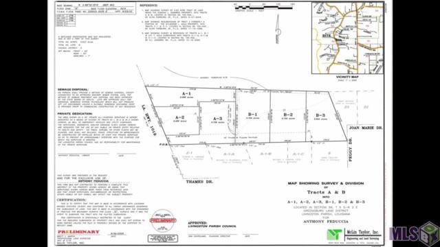 34122 La Hwy 1019, Denham Springs, LA 70706 (#2019011911) :: Patton Brantley Realty Group