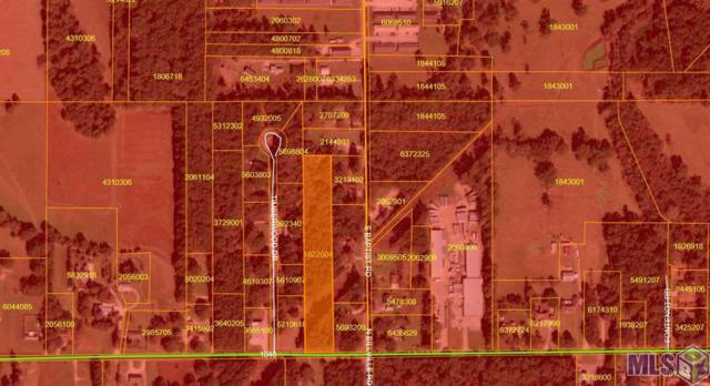 0000 Old Baton Rouge Hwy, Hammond, LA 70403 (#2019012343) :: Patton Brantley Realty Group