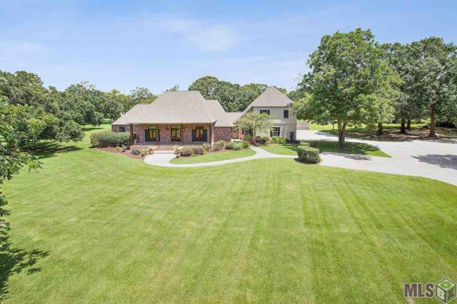 14389 Tiggy Duplessis Rd, Gonzales, LA 70737 (#2019012512) :: Darren James & Associates powered by eXp Realty