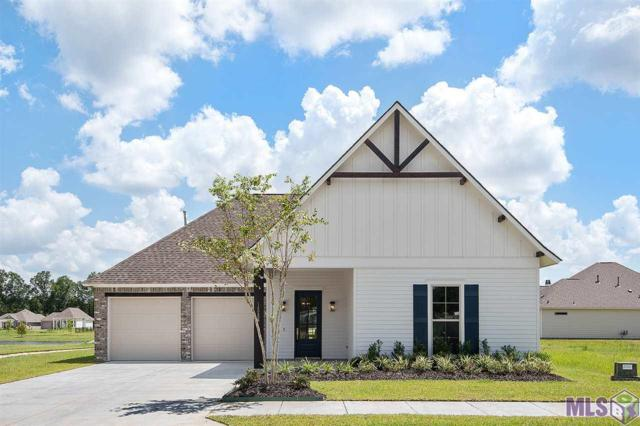 14256 Black Ridge Ave, Central, LA 70818 (#2019012528) :: The W Group with Berkshire Hathaway HomeServices United Properties
