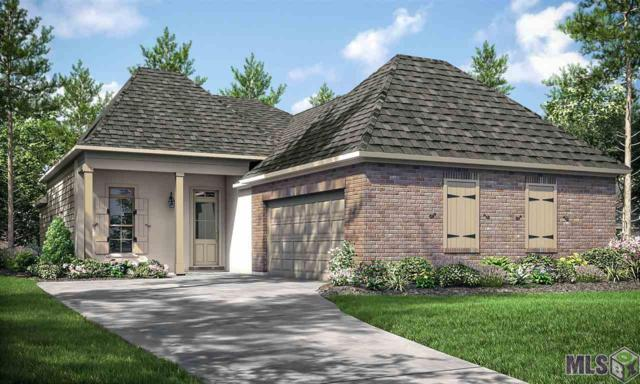 30084 Sanctuary Blvd, Denham Springs, LA 70726 (#2019013072) :: The W Group with Berkshire Hathaway HomeServices United Properties