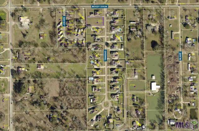 17253 Trinidad Dr, Prairieville, LA 70769 (#2019014199) :: David Landry Real Estate