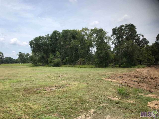 18069 Critter Cove Ln, Livingston, LA 70754 (#2019016112) :: The W Group with Berkshire Hathaway HomeServices United Properties