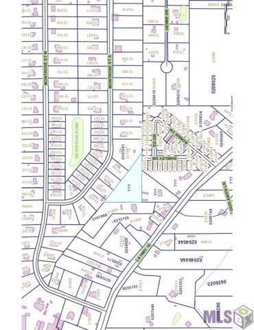 21517 Shirley Dr, Denham Springs, LA 70726 (#2019018663) :: David Landry Real Estate