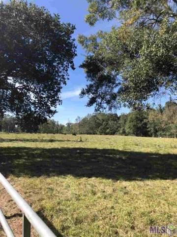 LOT A-3 & A-3-A Liz Rd, Prairieville, LA 70769 (#2019019054) :: The W Group with Berkshire Hathaway HomeServices United Properties