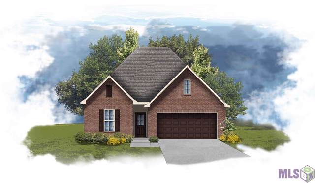 15176 Cedar Springs Rd, Gonzales, LA 70737 (#2019020931) :: Darren James & Associates powered by eXp Realty