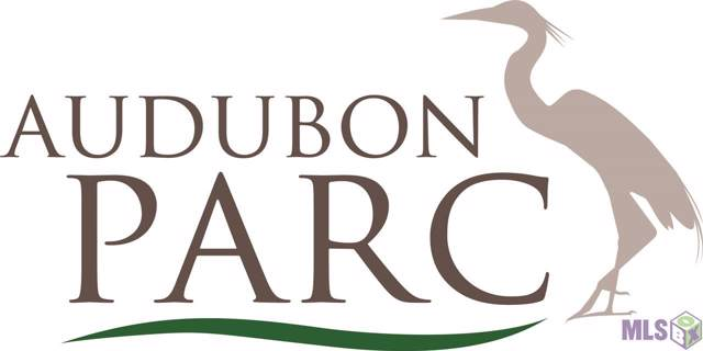 14145 White Herron Ct, Baton Rouge, LA 70817 (#2020001160) :: Smart Move Real Estate