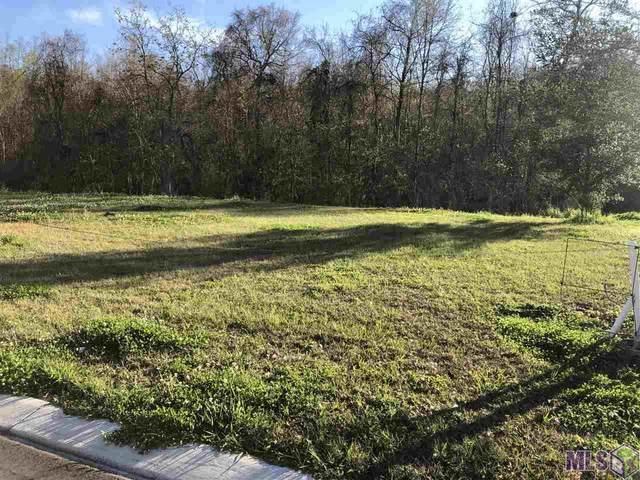 Lot 57 River Highlands, St Amant, LA 70774 (#2020002956) :: Patton Brantley Realty Group