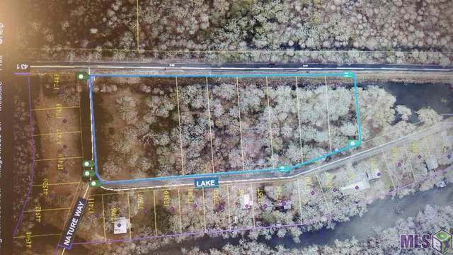 17443 Lake Rd, Prairieville, LA 70769 (#2020004639) :: Darren James & Associates powered by eXp Realty