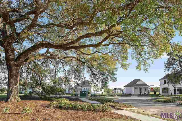 4742 Hanover Ave, Gonzales, LA 70737 (#2020010758) :: Darren James & Associates powered by eXp Realty