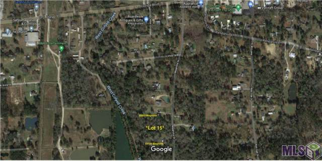 Lot 15 Magnolia Dr, Walker, LA 70785 (#2020017367) :: Darren James & Associates powered by eXp Realty