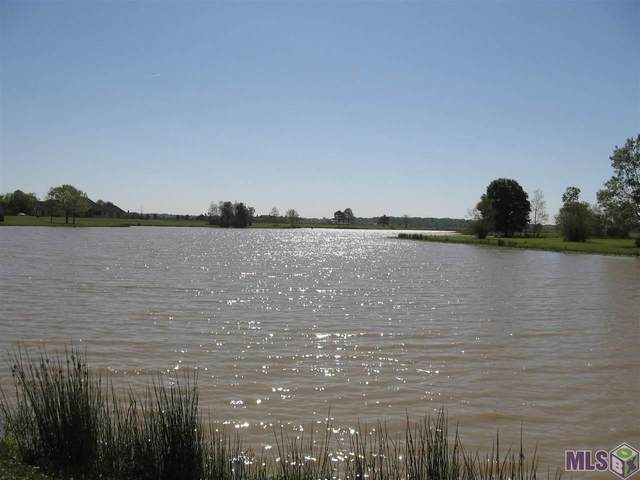 21102 Turkey Creek, Baton Rouge, LA 70817 (#2020019778) :: Smart Move Real Estate