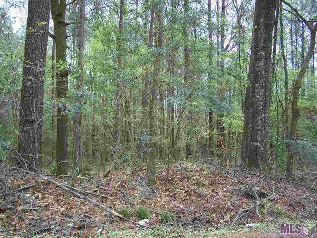 1.82 acres Avants Rd, Walker, LA 70785 (#2021003840) :: RE/MAX Properties