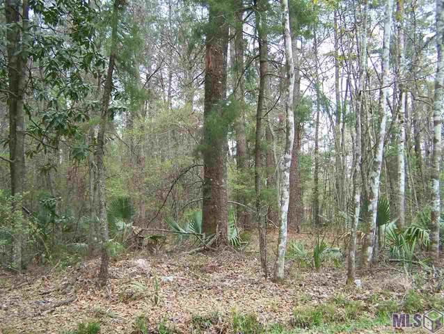 Tract G Avants Rd, Walker, LA 70785 (#2021003849) :: RE/MAX Properties