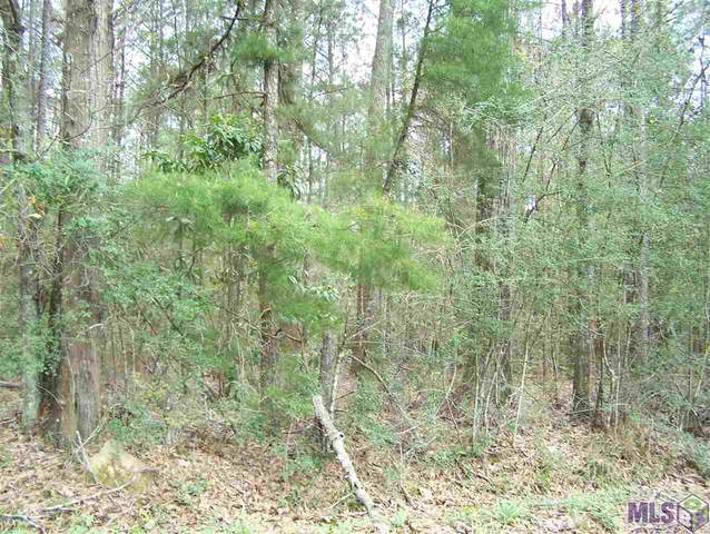 1.85 acres Avants Rd, Walker, LA 70785 (#2021003854) :: Darren James & Associates powered by eXp Realty