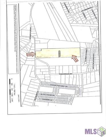 16815 Planchet Rd, Central, LA 70739 (MLS #2021009197) :: United Properties
