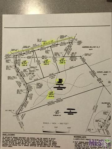 B-3-4 La Hwy 10, Clinton, LA 70722 (#2021011300) :: The W Group