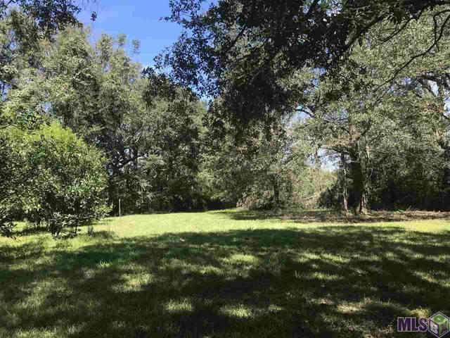 40192 Coontrap Rd, Gonzales, LA 70737 (#2021015174) :: David Landry Real Estate
