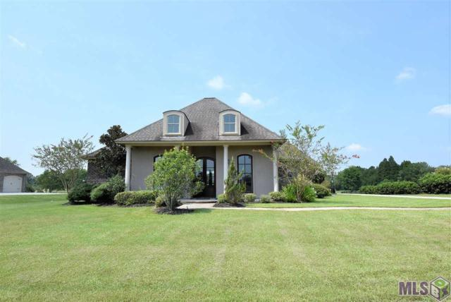 10399 Buddy Gore Rd, Gonzales, LA 70737 (#2017011595) :: Patton Brantley Realty Group