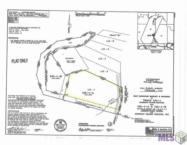 Lot LJL-1-A Gunboat Landing Rd, Maurepas, LA 70449 (#2017004300) :: South La Home Sales Team @ Berkshire Hathaway Homeservices