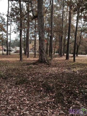 River Pines Dr, Springfield, LA 70462 (#2017006013) :: David Landry Real Estate