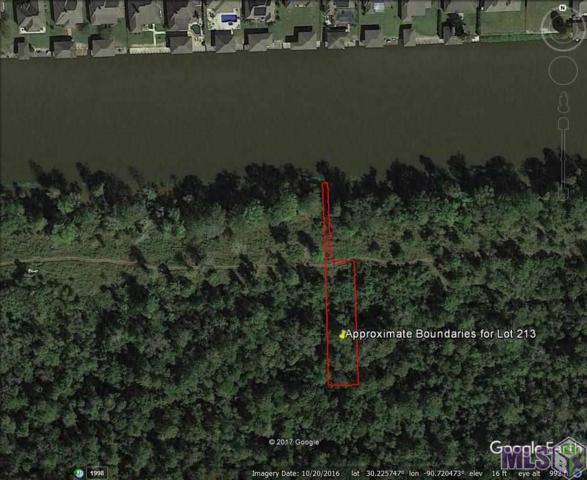 Lot # 213 Diversion Canal Rd, Maurepas, LA 70449 (#2017009694) :: Smart Move Real Estate